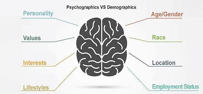 Image result for psychographics and demographics